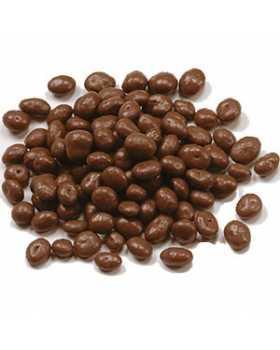 Sugar Free Chocolate Covered Raisins